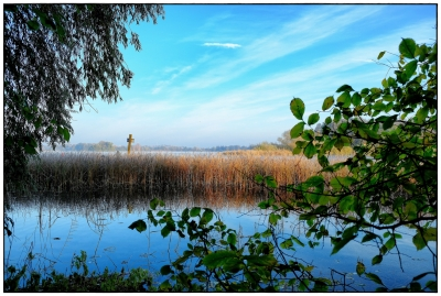 Morgens am See II