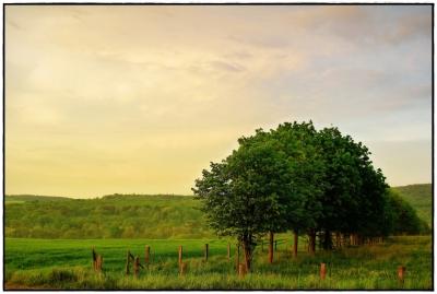 Sonnenuntergang Wehrheim I