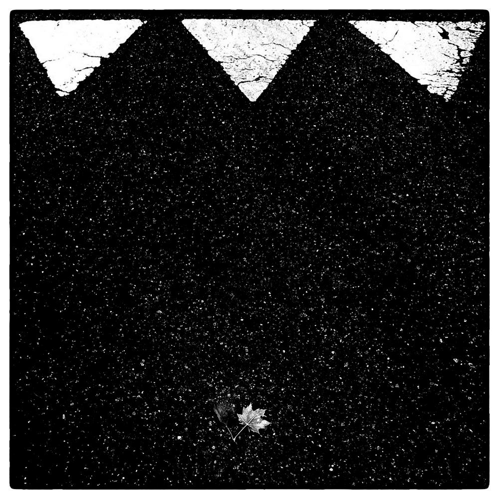 drei dreiecke und zwei blätter